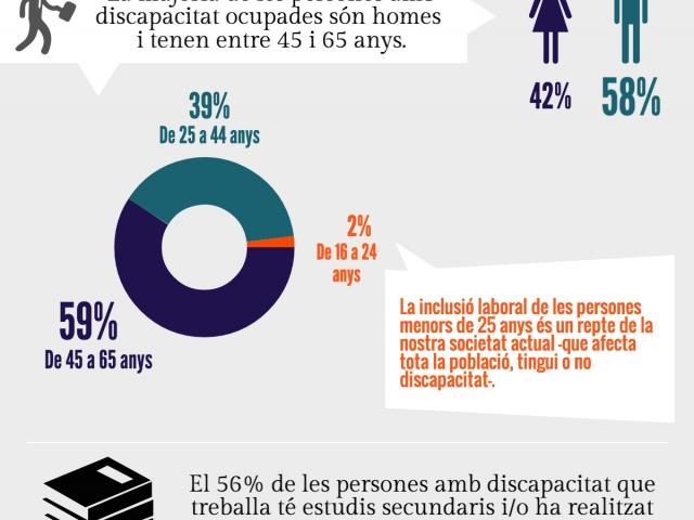 Característiques de la població amb discapacitat ocupada