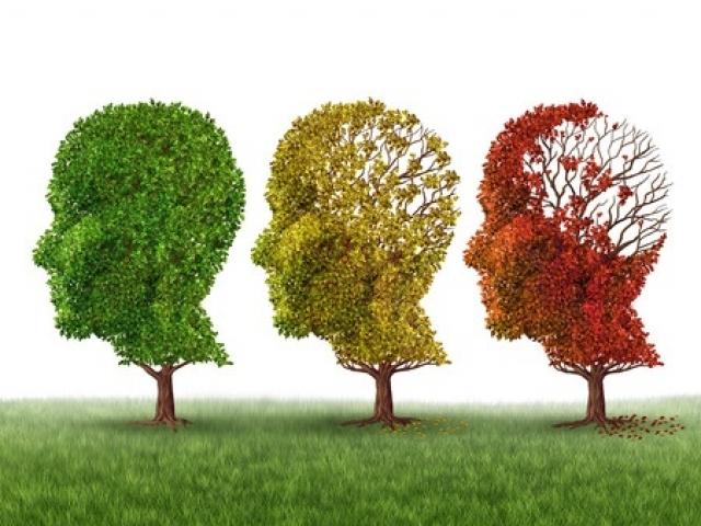 Efectos de la salud mental en la salud física